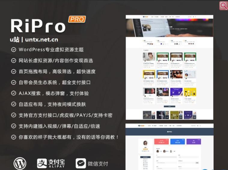 图片[1]-[WordPress主题]破解版Ripro专用子主题-jizhi-chlid极致主题已整合日主题(包含ripro6.6完整版)免授权